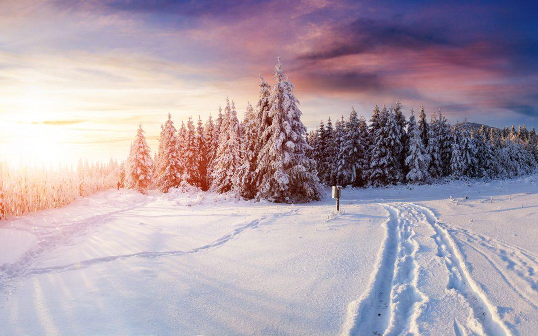 Winter Seasons End